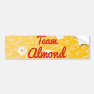 Team Almond Bumper Stickers