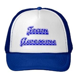 Team Awesome Mesh Hat