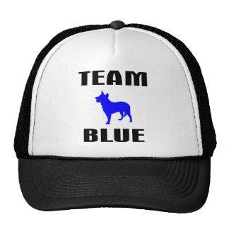 Team Blue Cap