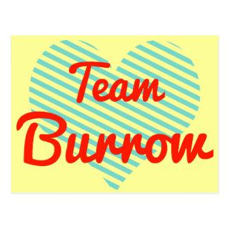 Team Burrow Postcard