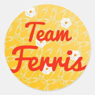 Team Ferris Round Sticker