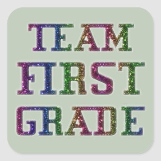 Team First Grade, Back To School Novelty Stickers