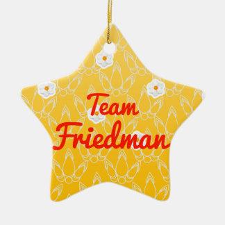 Team Friedman Ornament