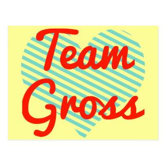 Team Gross Post Cards