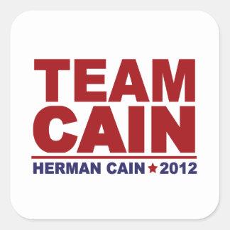 Team Herman Cain 2012 Square Sticker