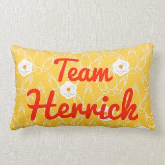 Team Herrick Pillow
