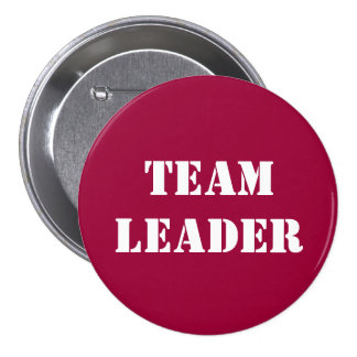 TEAM LEADER - buttons