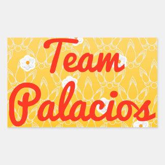 Team Palacios Stickers