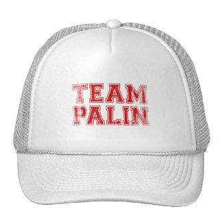 Team Palin Collegiate 1 Faded.png Cap