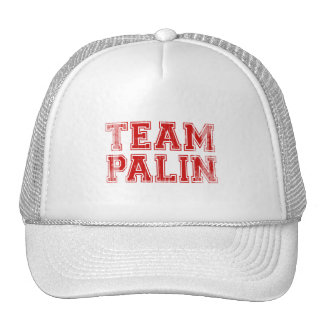 Team Palin Collegiate 1 Faded png Mesh Hat