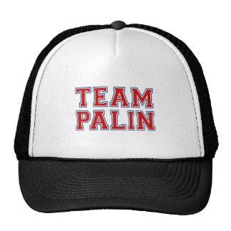 TEAM PALIN Collegiate (red white blue) Cap