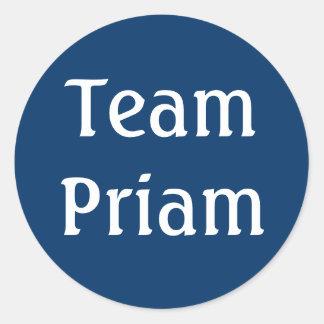 Team Priam sticker