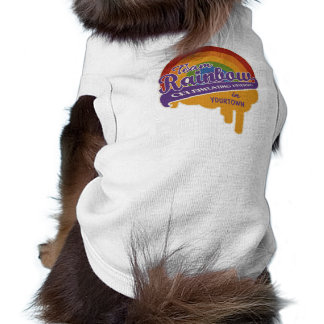Team Rainbow custom pet clothing