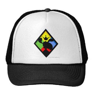 Team Roo Island Logo Mesh Hat