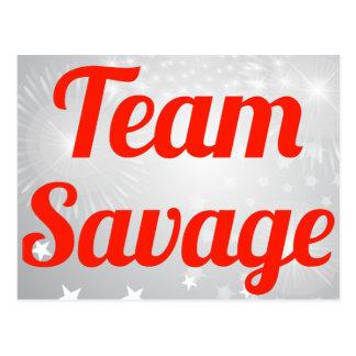 Team Savage Postcards
