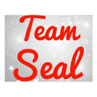 Team Seal Postcard