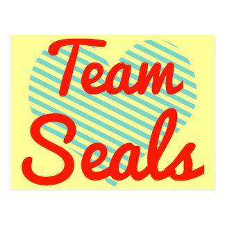 Team Seals Postcard
