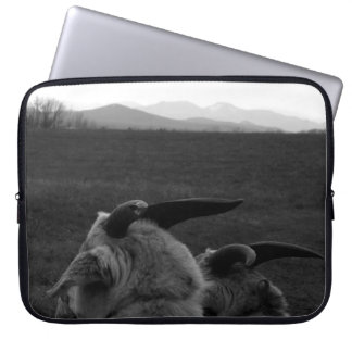 Team Snazzy Goat with the Adirondacks Laptop Computer Sleeves