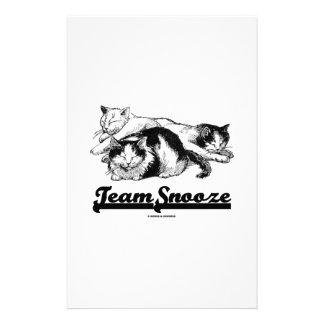 Team Snooze (Three Snuggling Sleeping Cats) Stationery Design
