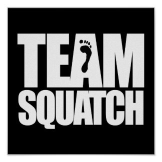 TEAM SQUATCH - POSTERS