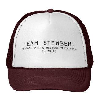 Team Stewbert Hat