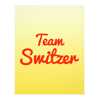 Team Switzer Custom Flyer