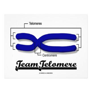 Team Telomere (Biology Humour) 21.5 Cm X 28 Cm Flyer