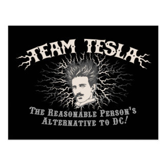 Team Tesla Static Hair Postcard