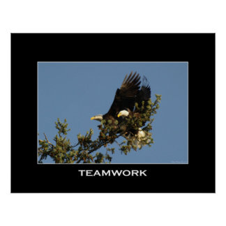 TEAMWORK Motivational Photo Poster