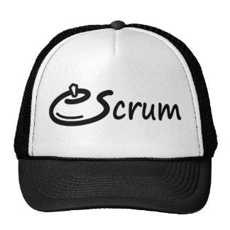 TeaScrum Hat