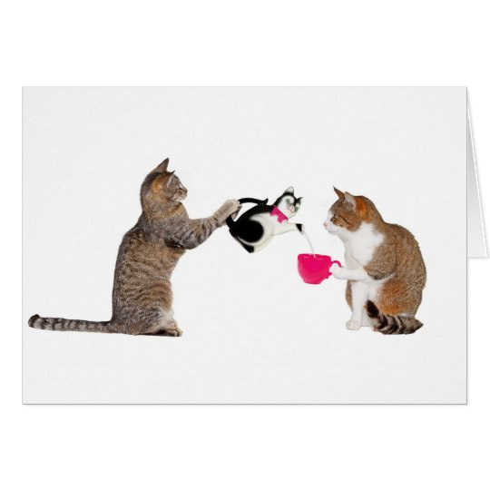 Teatime for kitty cats card