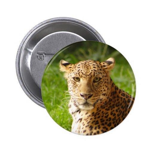 TecBoy.net Button - Leopard