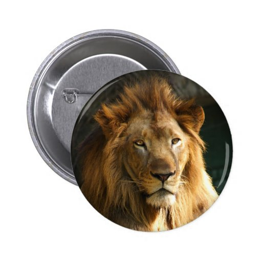 TecBoy.net Button - Lion