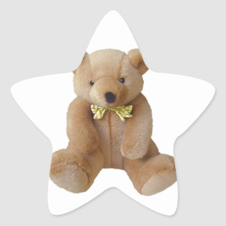 Teddy Bear  Baby Expecting Pregnancy Shower Love Star Sticker
