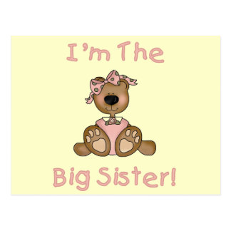 Teddy Bear Big Sister Tshirts and Gifts Postcard
