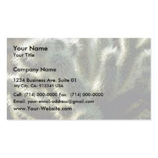 Teddy bear cholla cactus business card