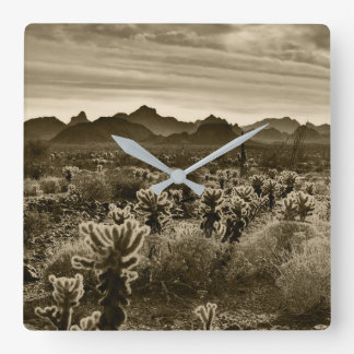 Teddy Bear Cholla Cactus Desert Plant Square Wall Clock