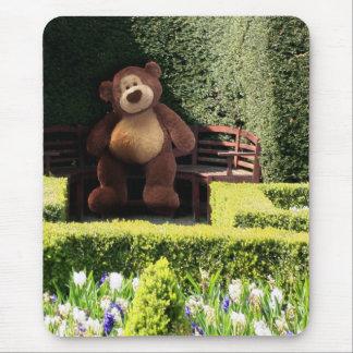 Teddy Bear in the Park Mousepad