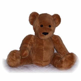 Teddy Bear Cut Out