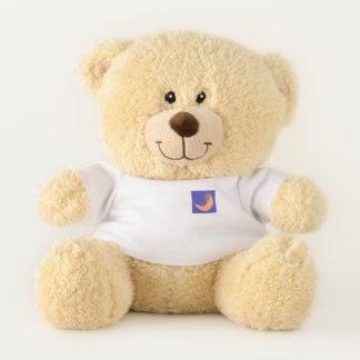 Teddy Bear with a t-shirt.