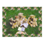 Teddy bears, bearly family gathering postcards
