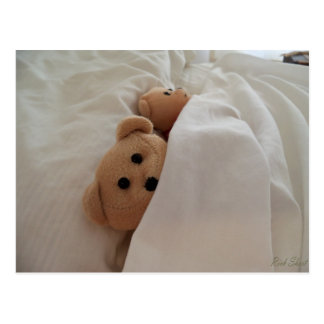 Teddy Bears Sleeping in late Post Card Photo