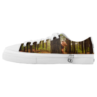 Teddy hiding in the woods low top Zipz shoes Printed Shoes