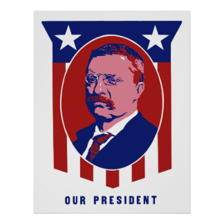Teddy Roosevelt -- Our President Poster