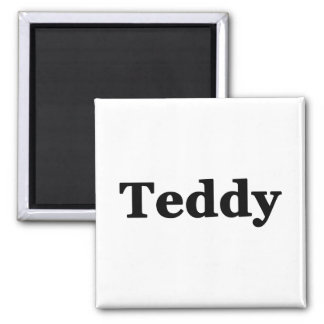 Teddy Square Magnet