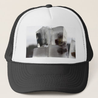 Teddy Trucker Hat
