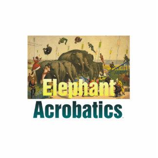 TEE Elephant Acrobatics Standing Photo Sculpture