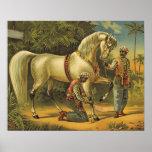 TEE Horse Royalty