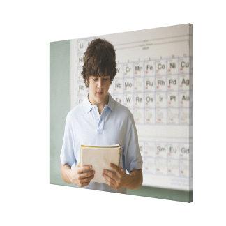 Teenaged boy giving speech in science class gallery wrap canvas