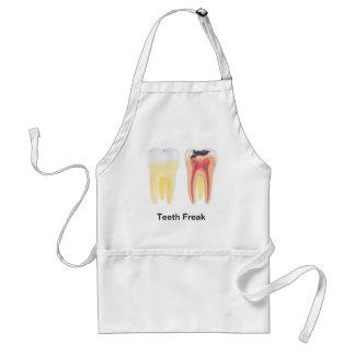 Teeth Anatomy Standard Apron